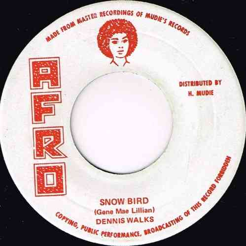 DENNIS WALKS-snow bird