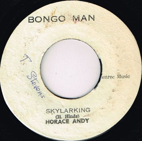 HORACE ANDY-skylarking
